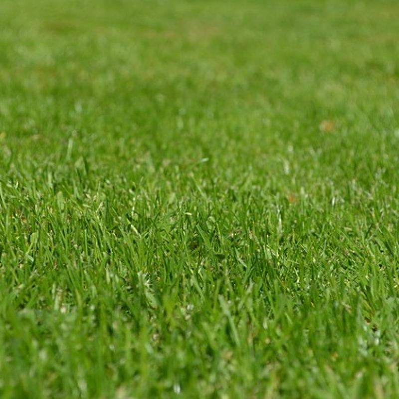 Вопрос-ответ В какое время года лучше вносить минеральные удобрения в почву?